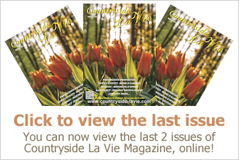 Last Issue Online