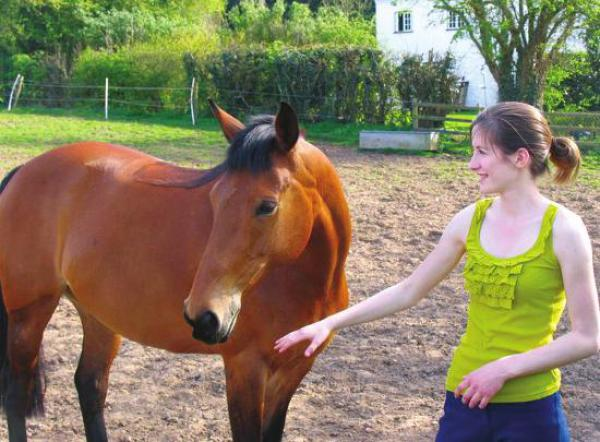 Therapeutic benefits of Horses by Emily Wardle