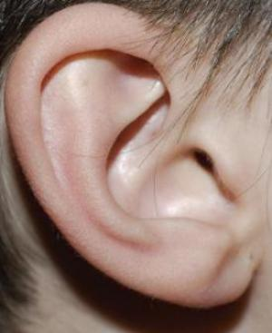 Identification of people by their ears
