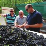 The Captivating Capelands and doing more than just making wine they are 'putting back' too