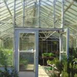 Five reasons why you should join the greenhouse gang this spring!