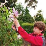 Lucas Hatch, RHS Young School Gardener of the Year 2012