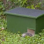 Hedgehog homes and hibernation