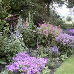 Hoby Open Gardens 20 & 21 June 2014